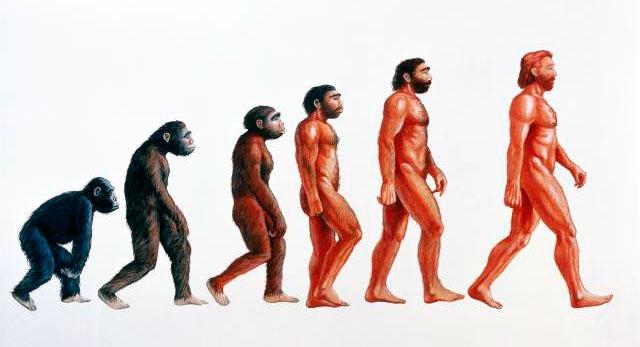 Как будет выглядеть человек будущего