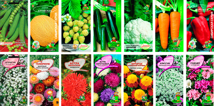 Какие сажают овощи 6