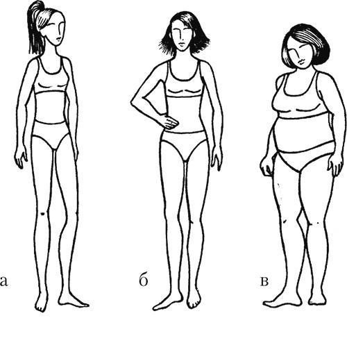 эндоморфный тип телосложения у женщин как похудеть