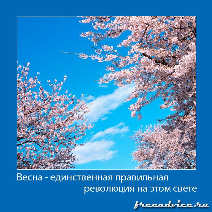 Весна - единственная правильная революция на свете!