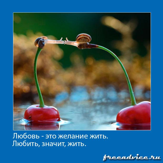 Любовь - это желание жить. Любить, значит, жить.
