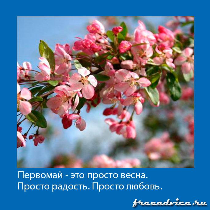 Первомай - это просто весна, просто радость, просто любовь